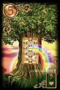 5 Der Baum