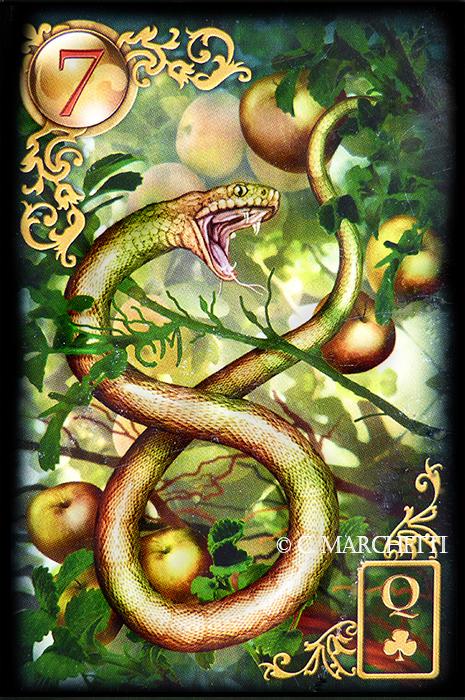 7 Die Schlange Lenormand